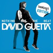 Nothing But The Beat david guetta
